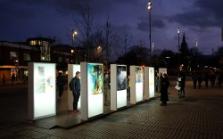 A photograph of light-box exhibition 'Letting in the Light' showing a number of illuminated artworks at dusk. A number of people are admiring the artworks.