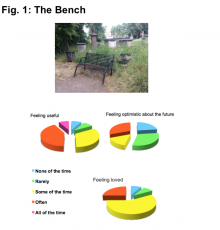 a picture of a park bench with a series of pie charts assessing how the bench feels about itself