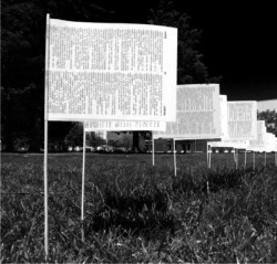 black and white photo of a series of paper flags in a field