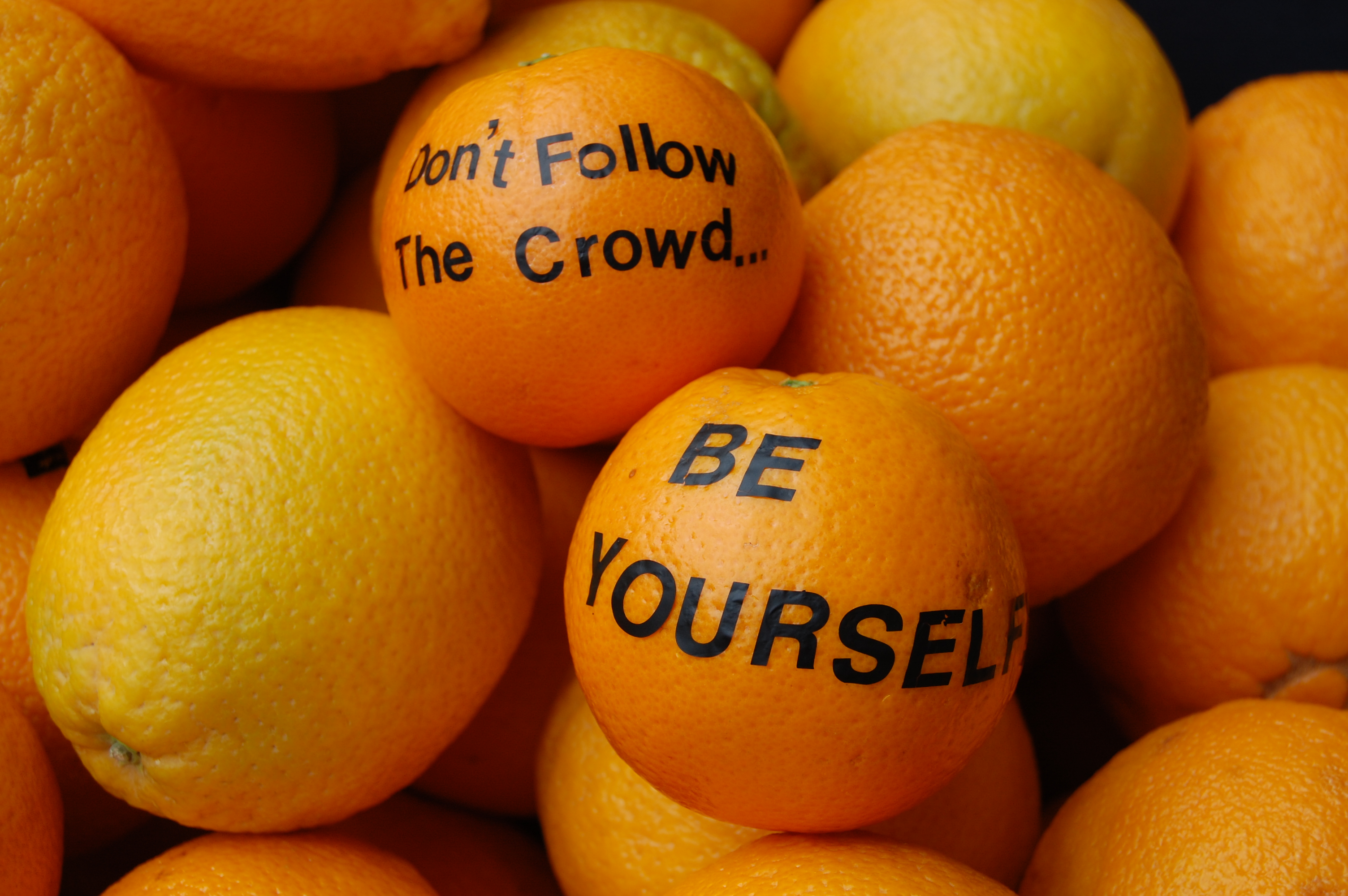 oranges with text written on them